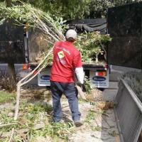 Affordable junk removal Bay Area Foster City